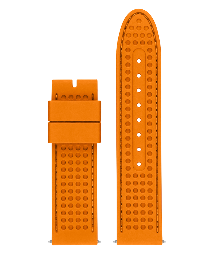 22 mm Accessory Strap  large